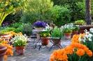 Garten_1