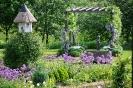 Unser Garten _25